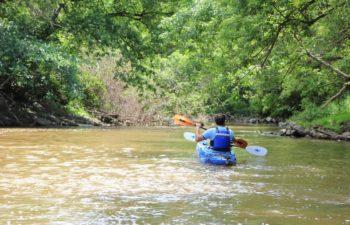 Kayak Junky