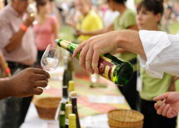 Wine Festival in Terrebonne