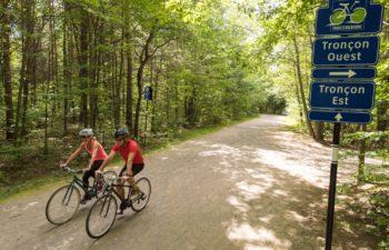 TransTerrebonne Trail