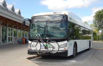 Info transport / Terminus d'autobus